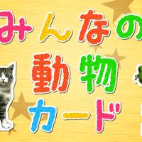 動物カードwebバナー